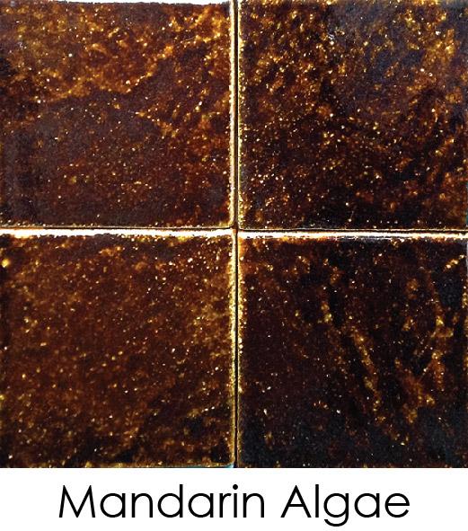 mandarin-algae2C92D7CF-1A07-115D-C98C-A50E2B5CBD42.jpg