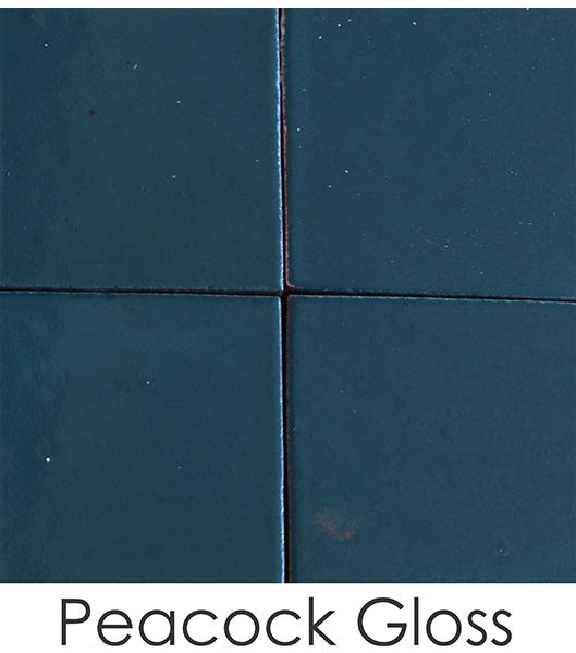 peacock-gloss126C24B8-6379-B13D-BC32-CE9A546C31A9.jpg
