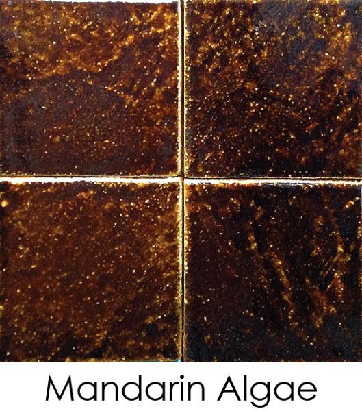 urban-yellow-06-mandarin-algaeFCBB231F-44D5-9566-ACB8-4A7A54FB79AA.jpg