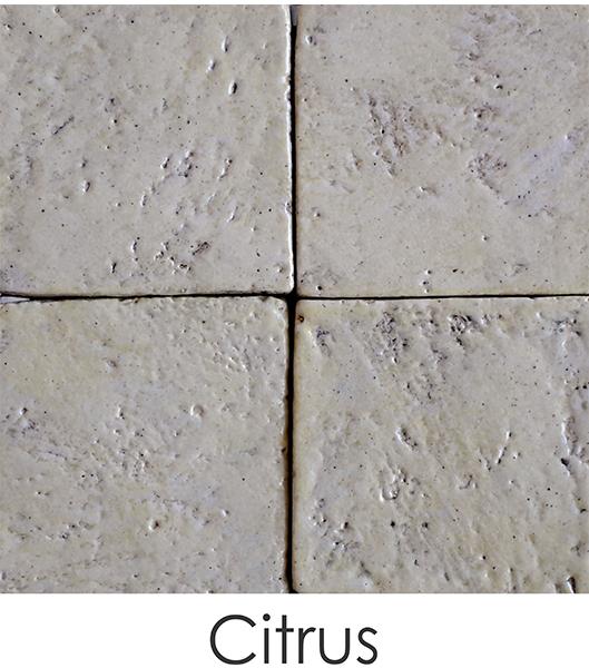 01-citrus0D49B0ED-C8DC-75C6-089E-D98B6F44E326.jpg